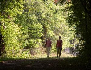 Les bords de l'Anglin – Sur les chemins
