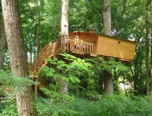 Cabanes dans les arbres 4m L'Augis nature