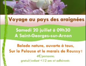 Balade-nature-Saint-Georges-sur-Arnon