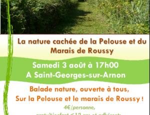 Balade-nature-nature-cachee-pelouse-et-marais-de-Roussy