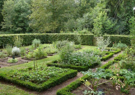 L'île du Moulin – Le jardin du Moulin