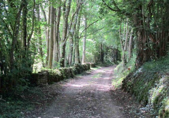 Les Terres d'Urmont – Sentier GR des Maîtres Sonneurs