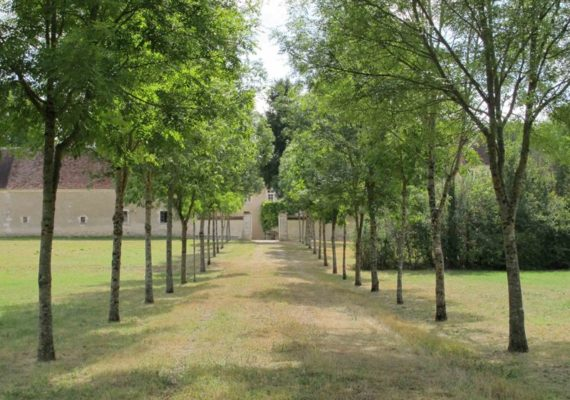 Sentier reliant l'abbaye à l'Arnon