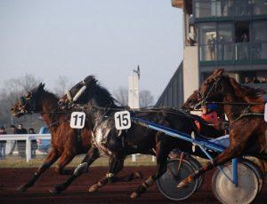 Courses-Hippodrome–2–4