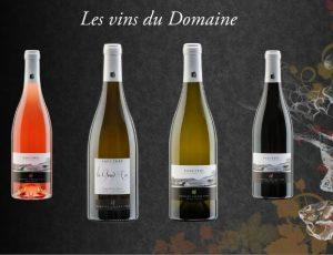 Domaine-Gerard-Fiou