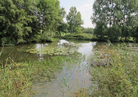 ENS – les prés du canal – Mézières-en-Brenne