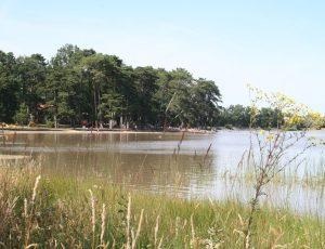 Site naturel de l'étang de Bellebouche