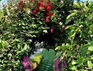 Entree-jardin-Maison-du-Lac-2