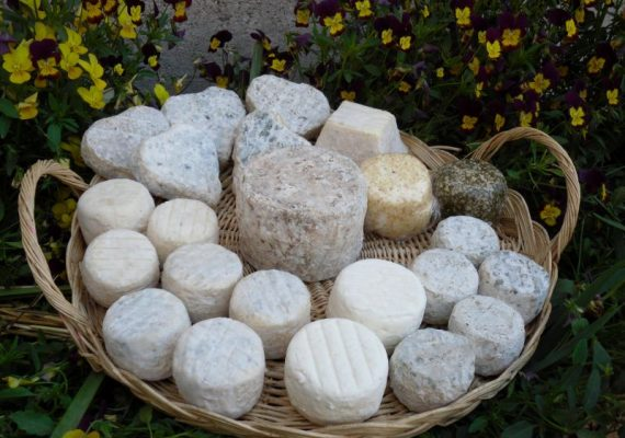 Fromages de chevre Gallands