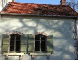 Salamandre – Domaine du Coudreau – Vendoeuvres