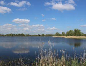 étang Neuf 2 – Domaine du Plessis