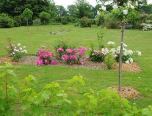 Jardin de Marie – Juin 2013 – Valentin Laebens (74)