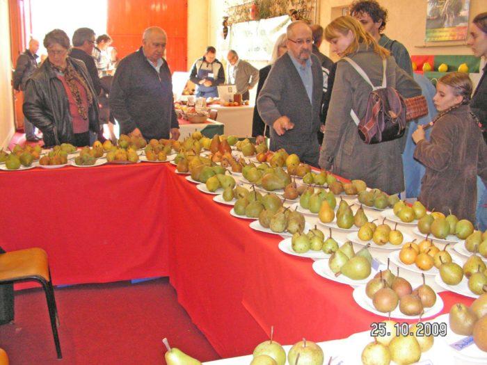 Journées de la pomme à Neuvy