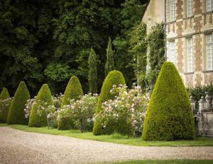 Jussy,-facade-sud-et-jardins