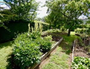L-Annexe-jardin