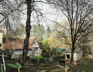 LE MOULIN FLEURY SANTRANGES