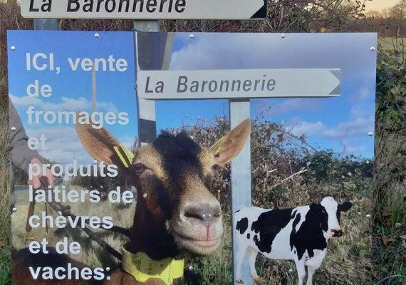 La-Baronnerie-4