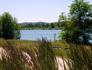 Lac de Virlay 3