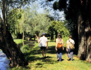 Géocaching pays Casleteroussin Val de l-indre – 1