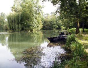 Les Iles du Fouzon – Varennes-sur-Fouzon – PNACEN036FS00004 – 1