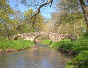 Loye-sur-Arnon-rando