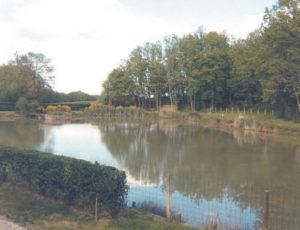 Meublé Clévacances «La maison de l'étang» Mme Bourbonnais à Faverolles