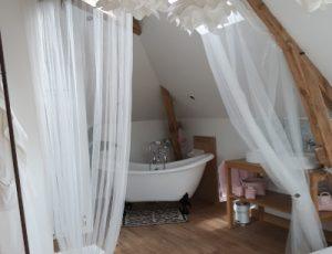 Meuble-de-tourisme-Aubigny-sur-Nere-Le-Buisson-de-la-Gariole-Salle-de-bain-