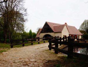 Pêche au Moulin d'Angibault