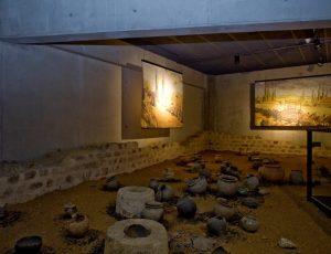 PCUCEN0360180023 – Musée d'Argentomagus – 1
