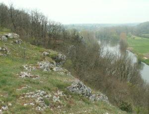 Réserve naturelle régionale du Bois des Roches