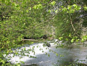 Petite creuse au Lieu-dit Bragoulet