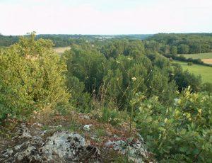 Point de Vue_Bois-des-Roches_CenCentre