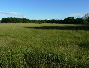 Velles Prairies-de-Velles