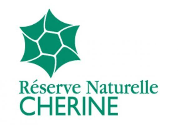 RNN Chérine