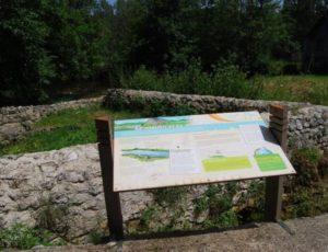 Sentier de l'eau Saint-Aigny (3)