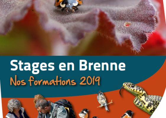 Stages-en-Brenne-2019-2