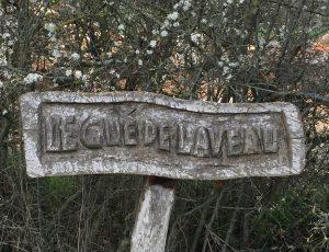 Sculpteur sur bois Van Ingen2