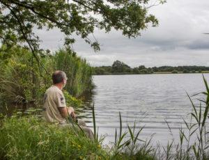 De vallons en brandes – Au bord de l'étang de la Grande Gorce