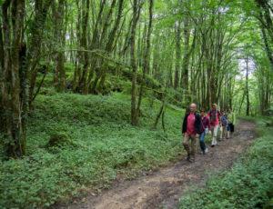 Histoire de chèvre et de pierres – Dans la vallée du Suin