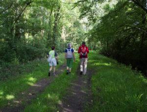 Entre Creuse et Suin –  Sur les chemins