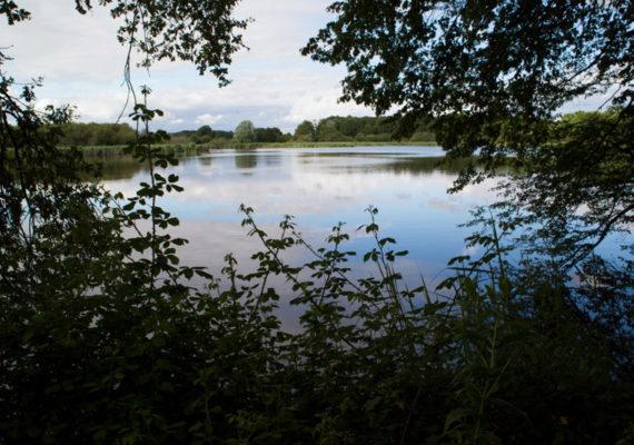 Le village des forgerons – Vue sur l'étang de Malakoff