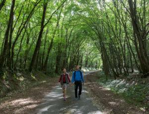 Balade de Saint Victor – Sur les chemins