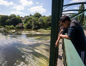 Des bords d'étangs au bord de Creuse – Vue du pont