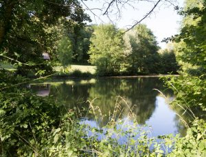 Vue sur l'étang communal de Oulches