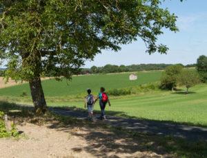 Le coteau aux loges de vigne – Sur les chemins