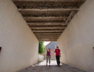 Le circuit des étangs Neuf – Dans le passage à la maison des hirondelles