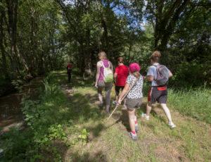 Le circuit des étangs Neuf – En repartant des étangs Neuf