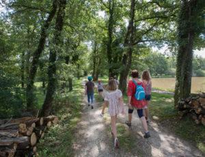 Le circuit des étangs Neuf – Chemin ombragé