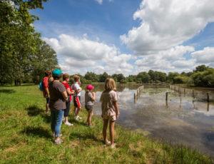 Le circuit des étangs Neuf – Aux étangs Neuf