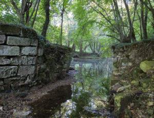 Entre falaises et coteaux de l'Anglin – Les ruines du moulin de Braud